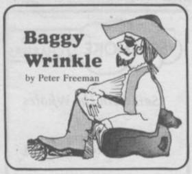 Baggy Wrinkle logo